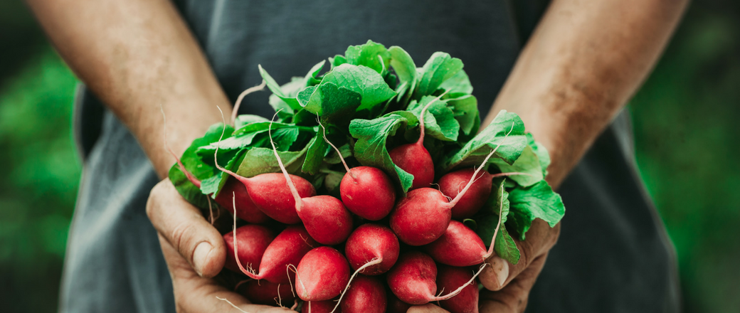 How to Heal Hypothyroidism with Food